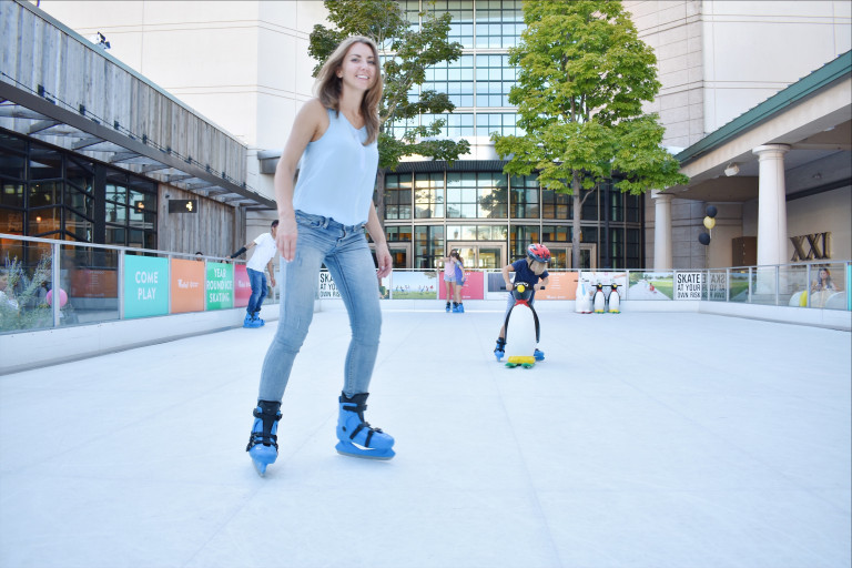Adult Ice Skating Lessons in Chicago